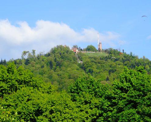 Bildquelle: Schwarzwald